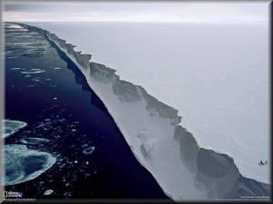 fe ant ice wall454