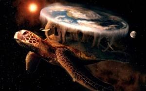 FE turtle