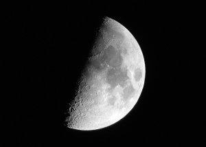 feo half moon